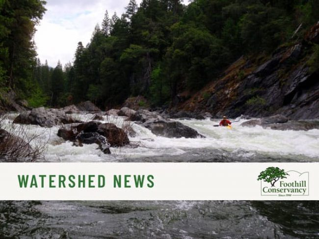 watershed-news